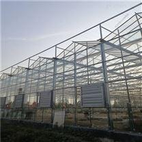 城市农业 垂直立体栽培 生态种植玻璃温室