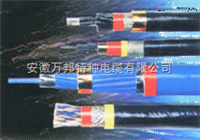 DJYP2V-2*2*1.0计算机用屏蔽电缆