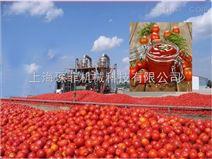 热销自动番茄酱加工生产线
