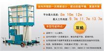 桅柱式高空作业平台(双桅)