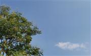 混合云的深层价值:弹性互联、安全高效