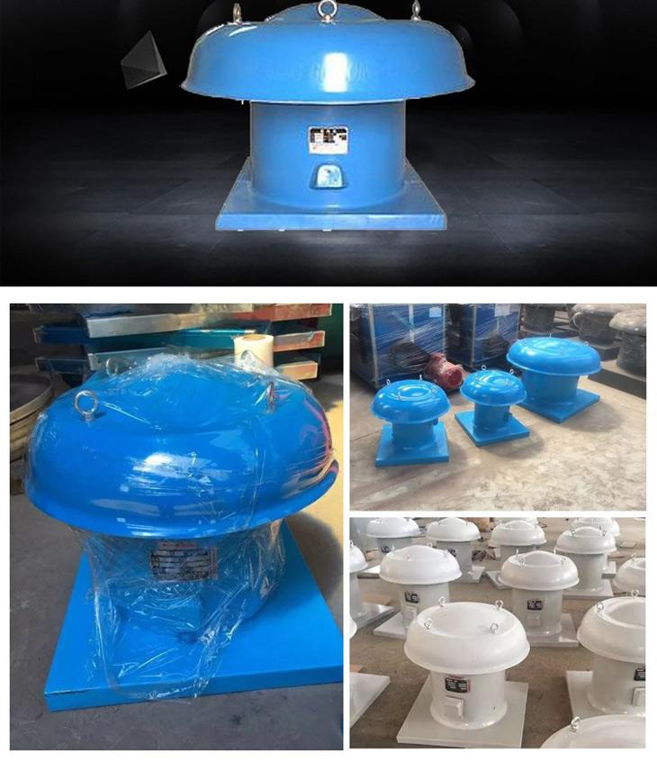 軸流型層頂排風機產品介紹8
