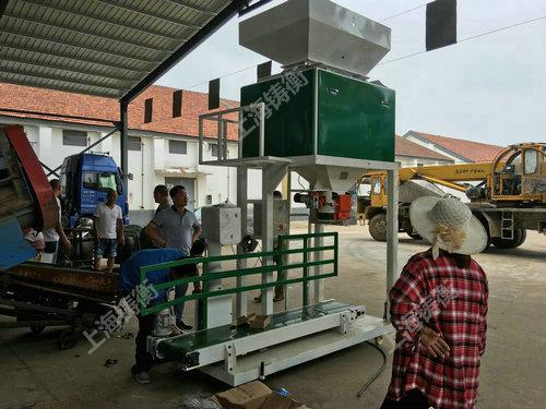 双秤玉米包装机